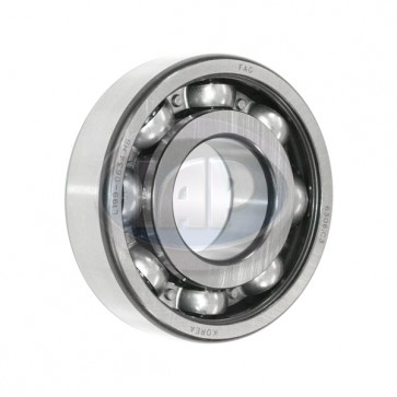 FAG Wheel Bearing - Rear