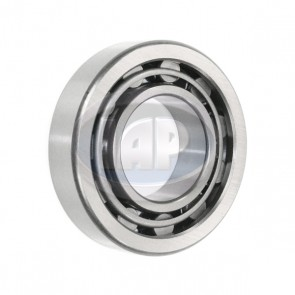 Wheel Bearing - Rear; Outer